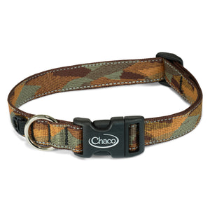 Dog Collar - Rambling Gold