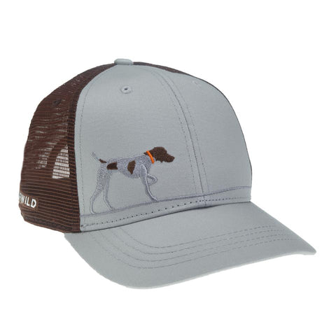 Pointer on Point Hat