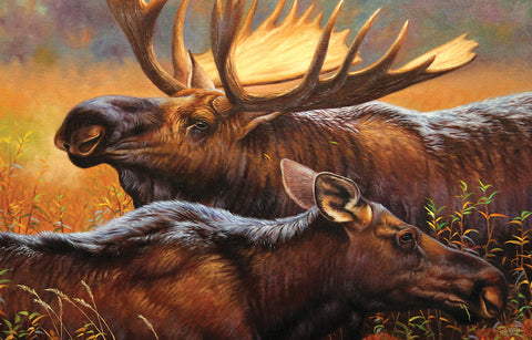 Bull and Cow Moose 1000 Piece Puzzle