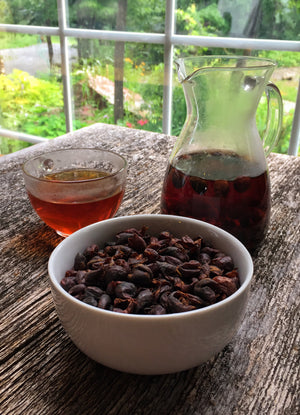 Cascara - Coffee Cherry Tea