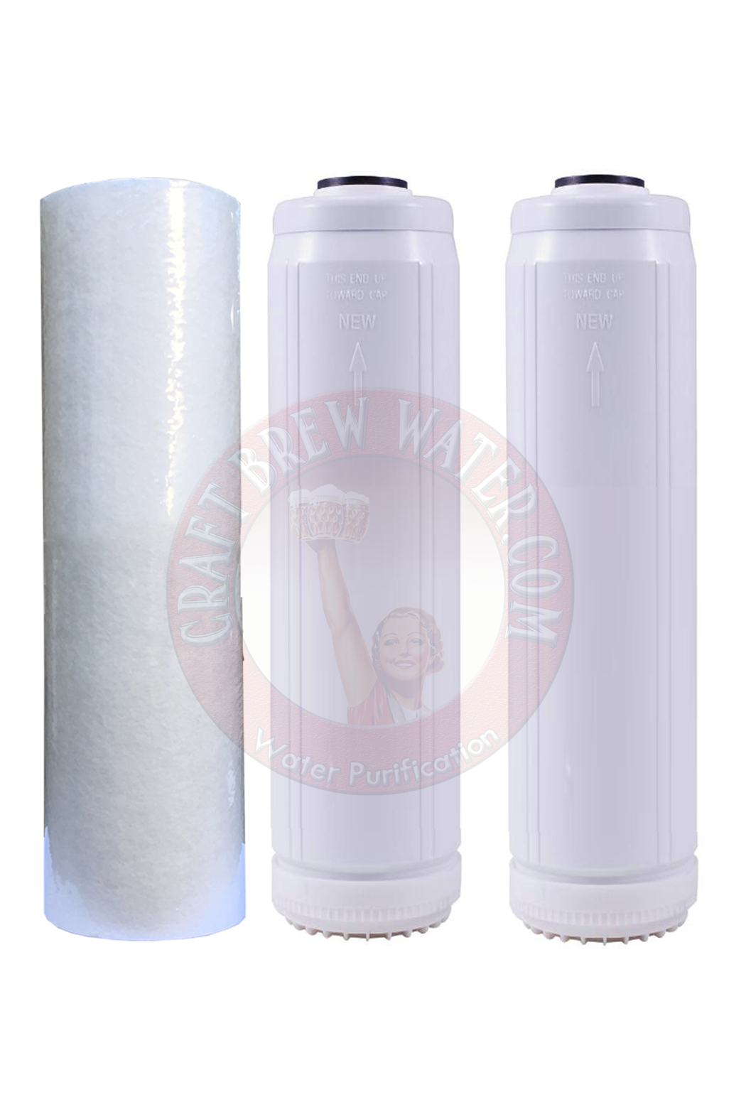 "HYDRO CURE DELUXE 50 MICRON 10/""x2.5/"" SEDIMENT FILTER 2 FILTERS"