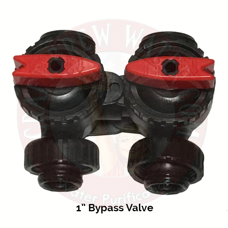 "1"" Bypass Valve for Cat and GAC Carbon Systems"