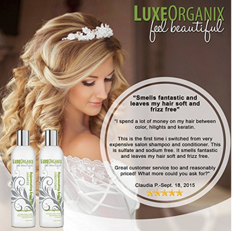 LuxeOrganix Moroccan Argan Oil Shampoo & Conditioner - (8 oz SET)