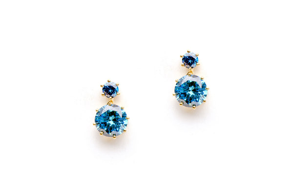 Annora Earrings in Blue