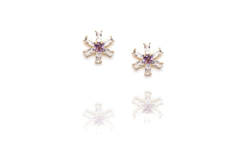 Glitz Earrings in Purple