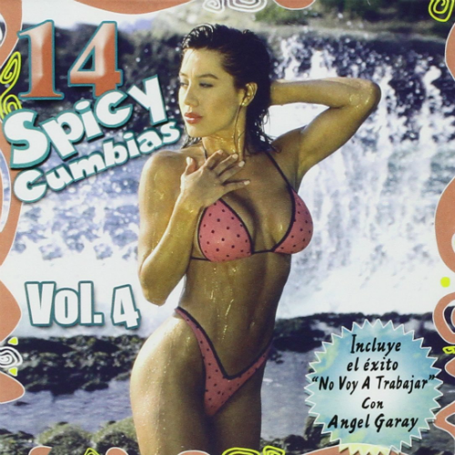 14 Spicy Cumbias (CD Various Artists) 037628753520