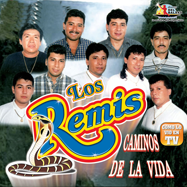 Remis (CD Caminos De La Vida) BRCD-191