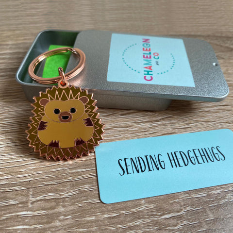 sending hedgehugs keyring gift, sending hedgehugs gift, virtual hug gift, letterbox gift, lockdown gift for friend, sending hugs gift