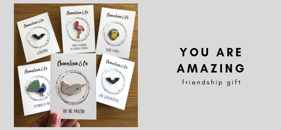 friendship gift, positive message gift, you are amazing gift for friend