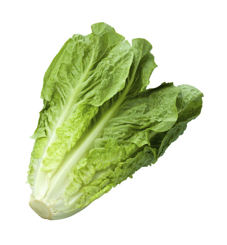 Lettuce, Romaine/  . . . . . Ctn, 1 1/9 bu, 15 ct/ Available: Apr.-June; Oct.-Dec.