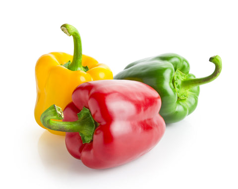 Peppers, Green Bells/ Ctn, 1/2 bu, 10 lbs/ Available: July-Oct.