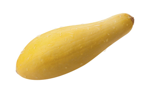 Squash, Yellow SN, Fancy/ . . Ctn, 1/2 bu, 20 lbs/ Available: June-July
