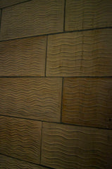 Waves in the Walls of the Natural History Museum