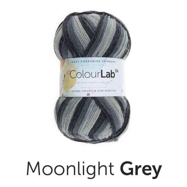 ColourLab DK by West Yorkshire Spinners 100g