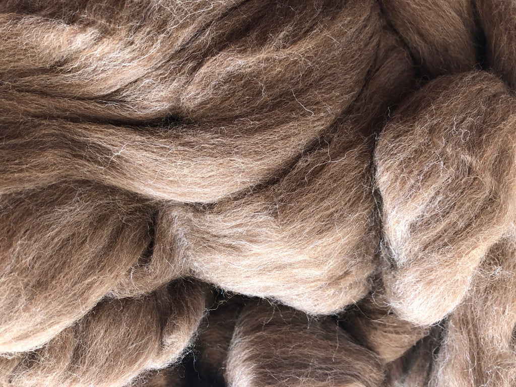 Natural Shetland Wool Top - Moorit