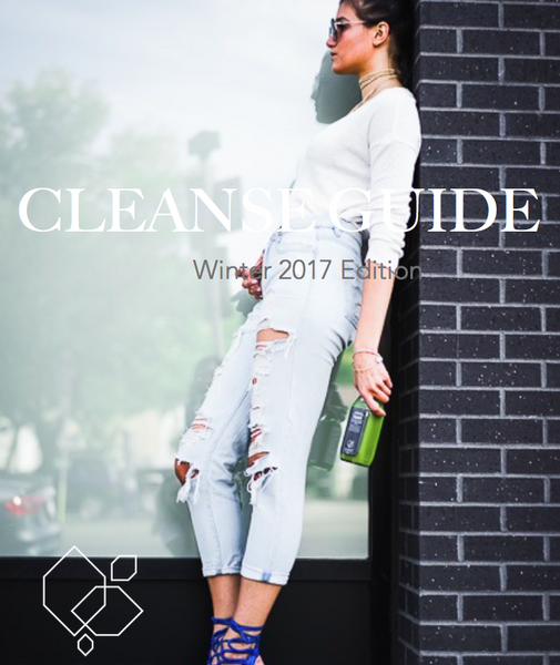 JB Cleanse Guide - Winter 2017