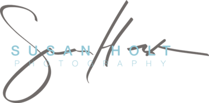 Susan Holt Photography