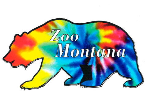 Decal - Tie Dye Bear