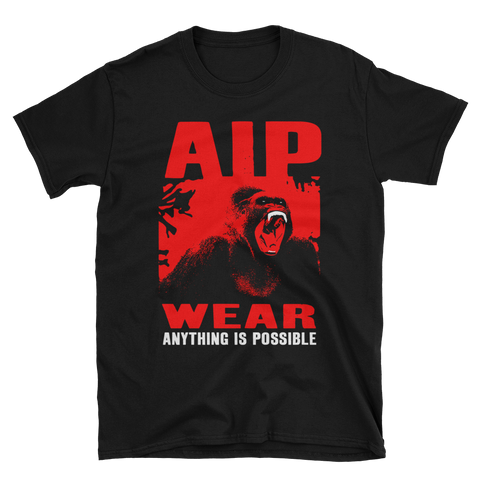 AIP WEAR ~ ANYTHING IS POSSIBLE