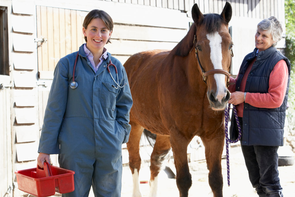 What Does Your Horse's Blood Test Mean?