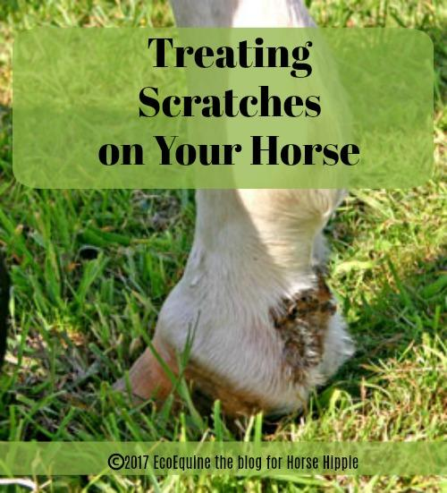 "Alternative Remedies For ""Scratches"" in Horses"