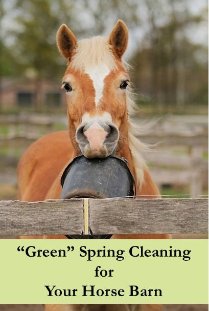 EcoEquine_Green Cleaning Cover
