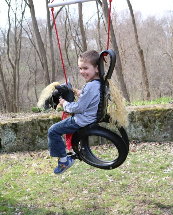How to Make A Horse Tire Swing PDF