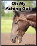 Alternative Options For Equine Ulcers PDF