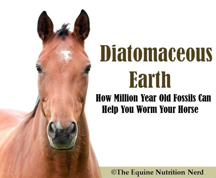 Understanding Diatomaceous Earth for Horses PDF