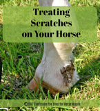 Alternative Treatments for Equine Scratches PDF