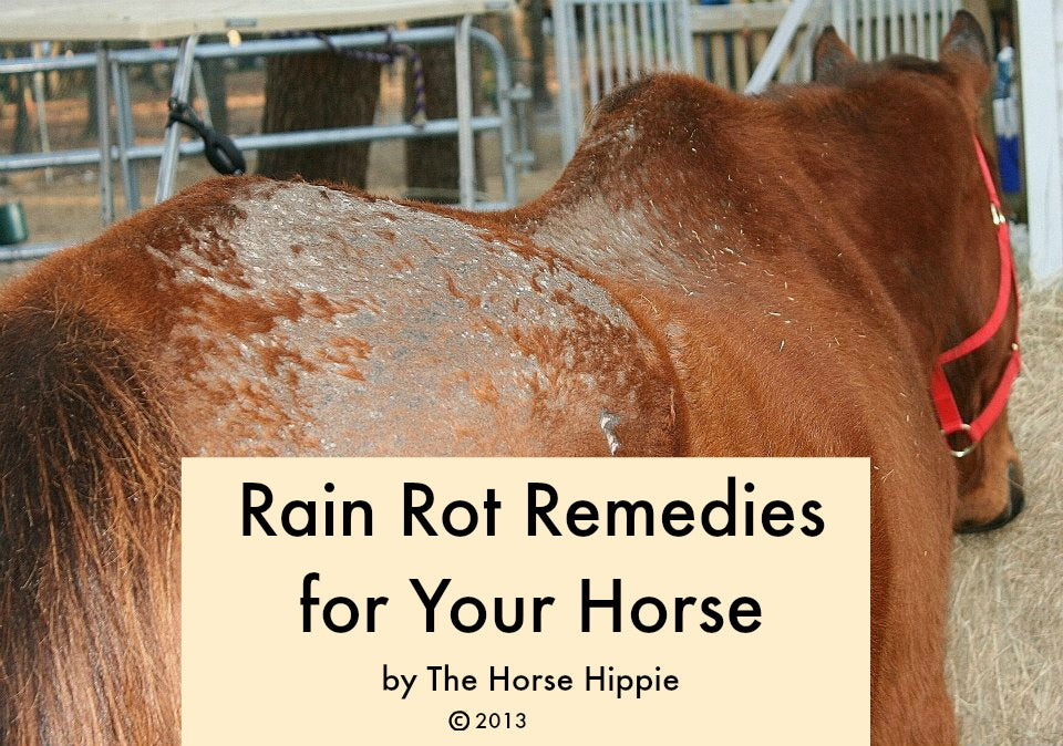 Rain Rot Remedies For Your Horse PDF