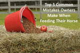 Five Common Mistakes People Do When Feeding Their Horse PDF