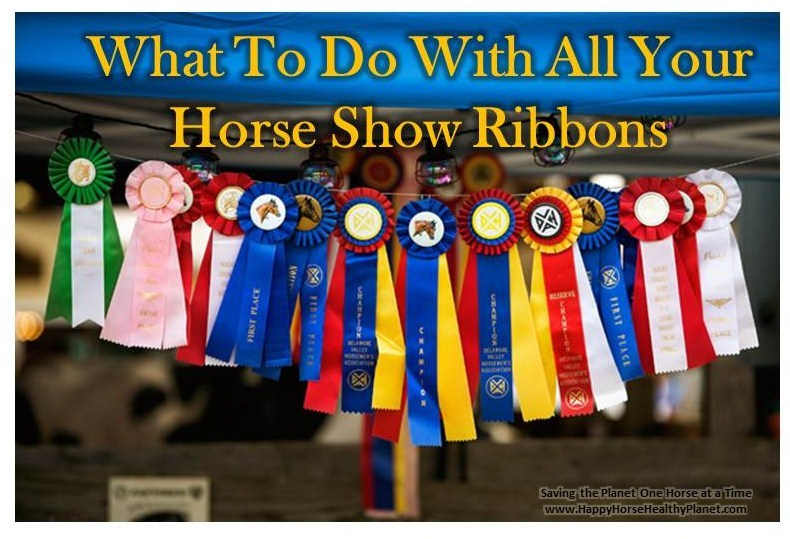 Ideas For Horse Show Ribbon Re-Purpose PDF