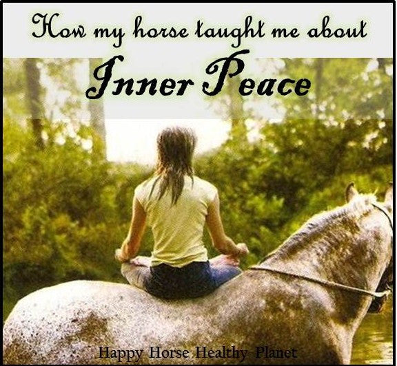 How My Horse Taught Me About Inner Peace PDF