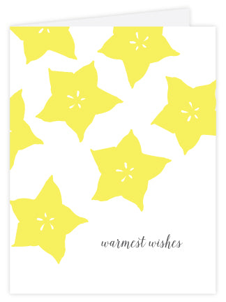Starfruit Warmest Wishes Letterpress Card