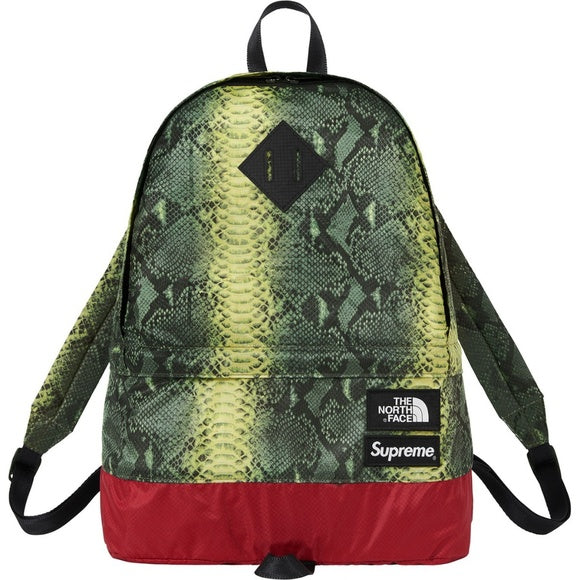 Supreme The North Face Snakeskin Lightweight Day Pack
