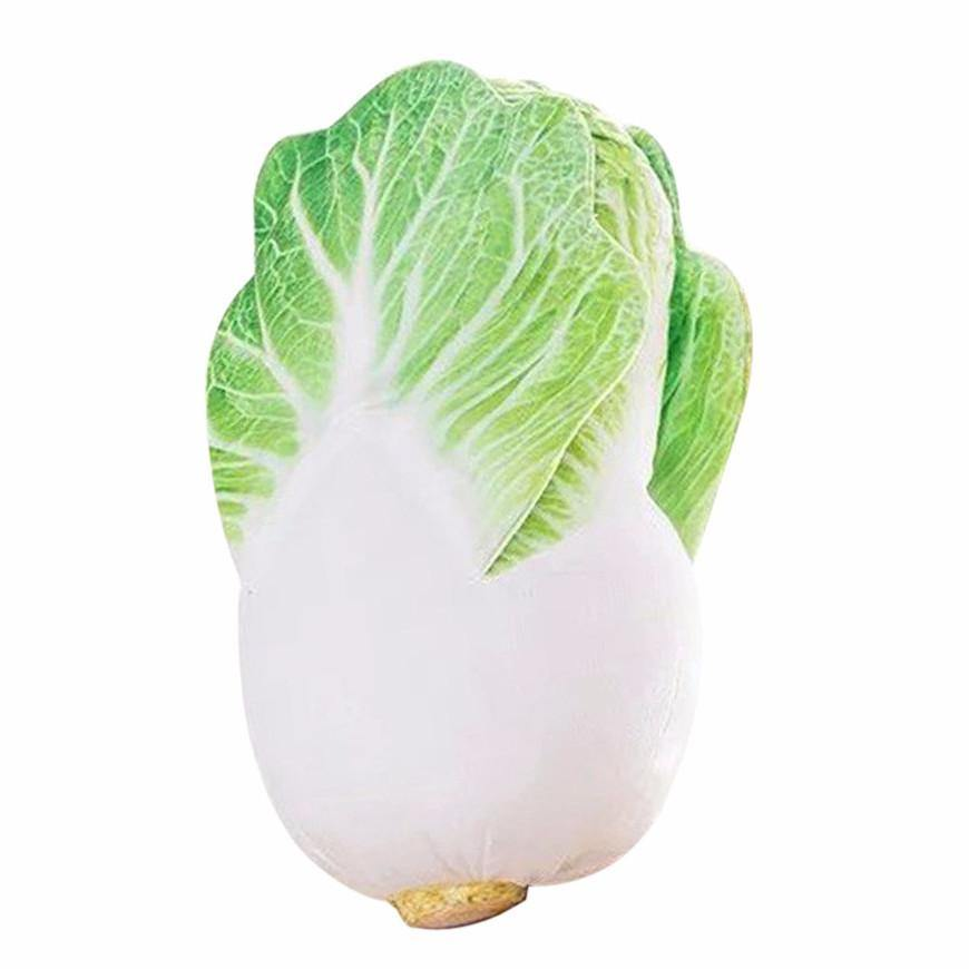 Creative Stuffed Throw Pillow Gift /Unique Plush Soft Toy (Fun Unusual) [Cabbage /Vegetable]