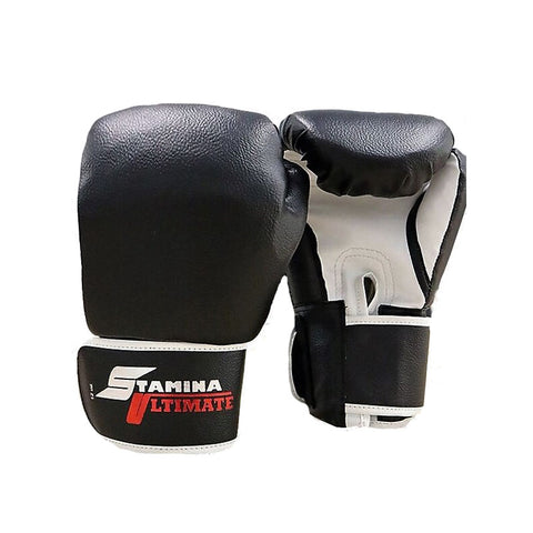 Boxing Gloves PRO