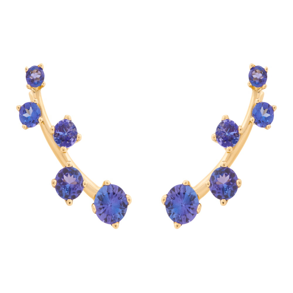 Sanyati Earrings - Tanzanite