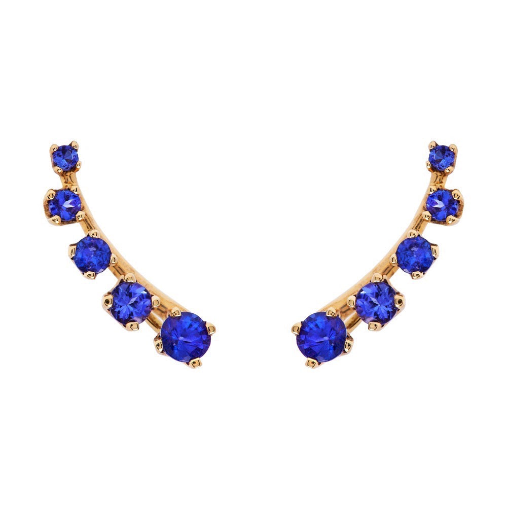 Mtondo Earrings - Tanzanite