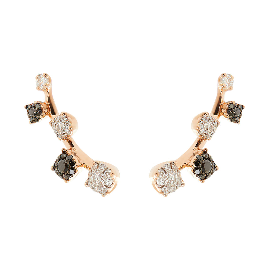 Sanyati Earrings - Black & White Diamond