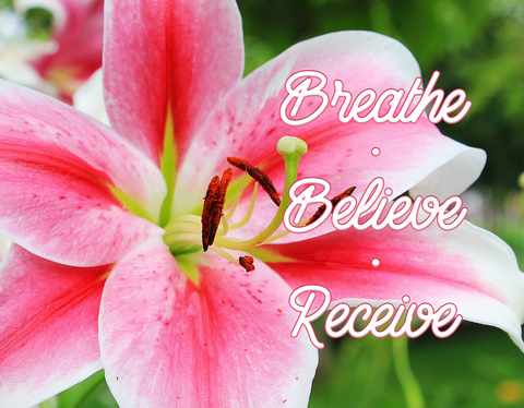 Breathe Believe Receive -  Canvas Print