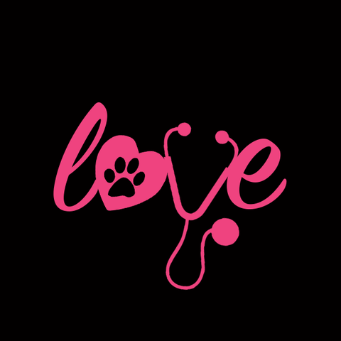 """Love"" Veterinary Decals"