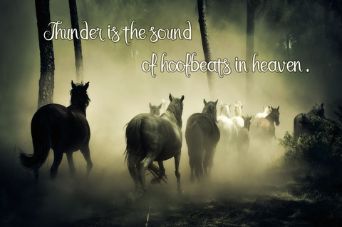Thunder Is The Sound Of Hoofbeats In Heaven -  Canvas Print