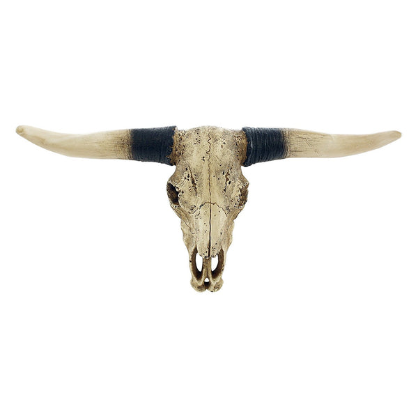Southwestern Bull Longhorn Skull Steer Bull Head Rustic Chic Wall Hanging Texas Decor by Pine Ridge | Strong and Durable Polyresin Made Aged Finish Sculpture Replica of Real Steer Head Skull Gift Idea