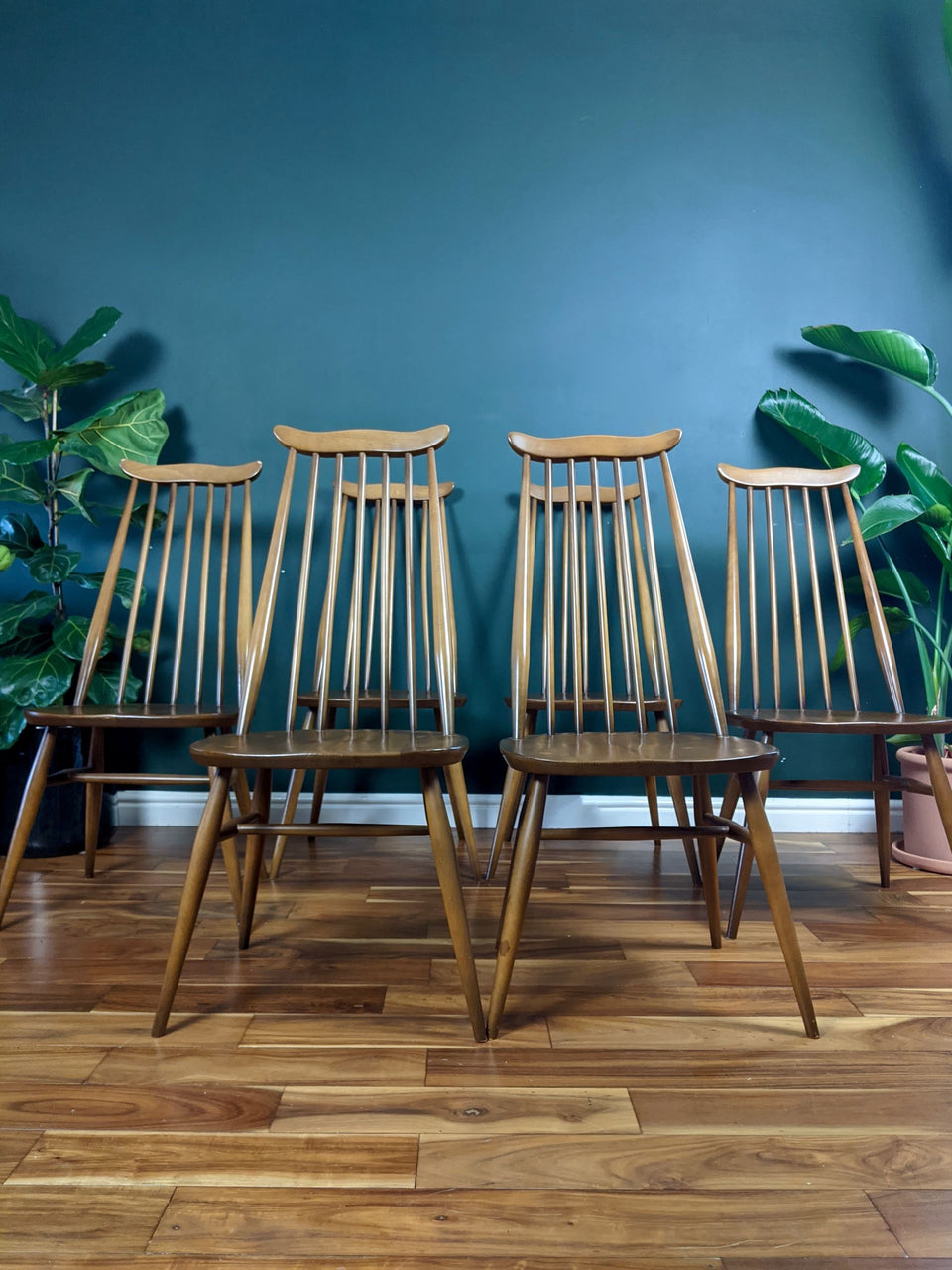 Ercol 369 Goldsmith Windsor Chair Set of 6