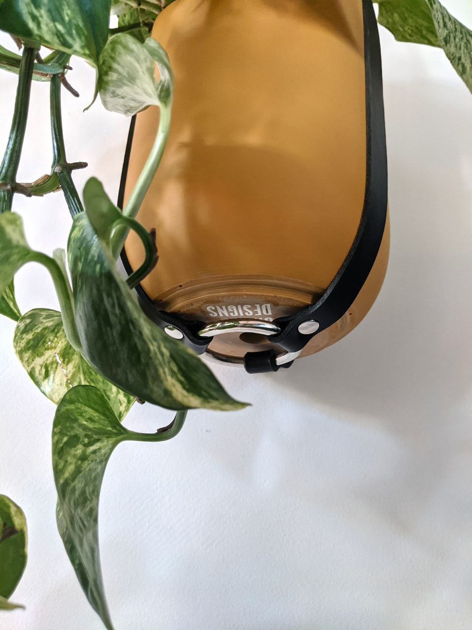 Hung Studios Black Leather Plant Hanger