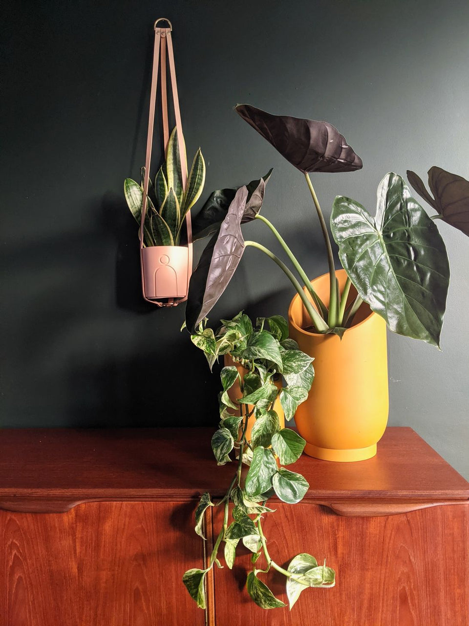 Hung Studios Leather Plant Hanger Peachy Nude