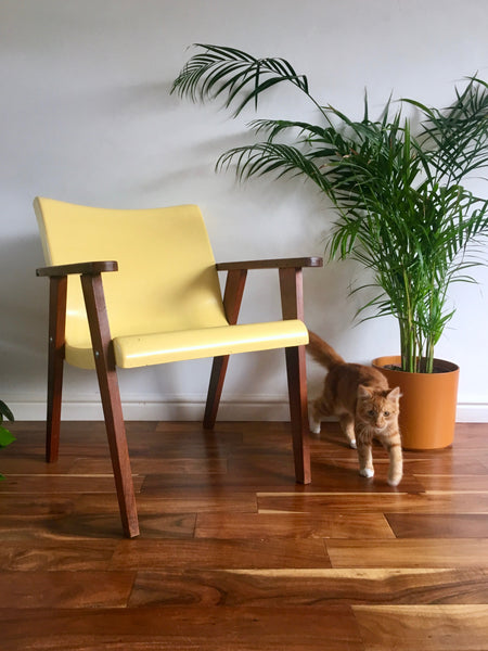 Mid Century Modern Yellow Fibreglass and Teak Armchair