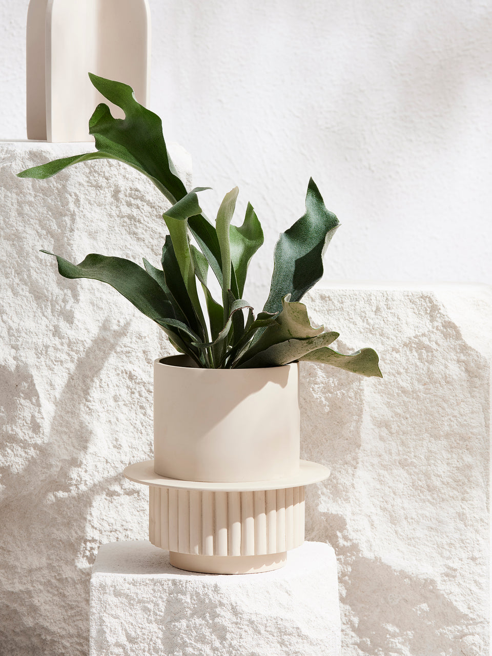 Capra Designs Roma Plant Pot Fossil with Tray